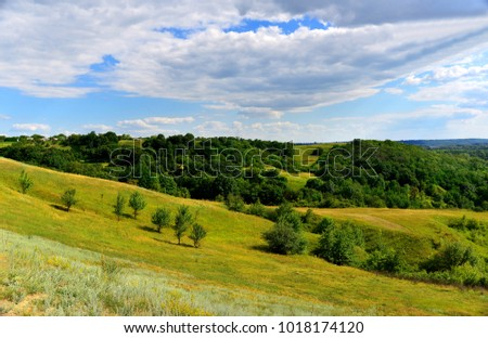 Beautiful summer landscape of mountainous terrain, flowering grass, blue sky, trees and hills. Wild nature