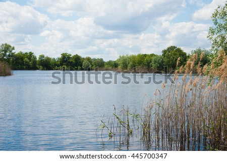 Beautiful summer landscape on the river bank, sunny day