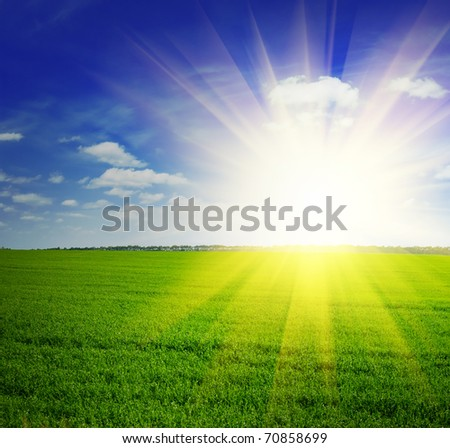 Beautiful summer landscape. Sky and grass. - stock photo