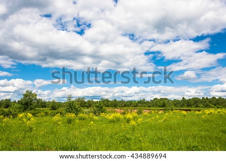 Beautiful summer landscape with Cumulus clouds in the blue sky.