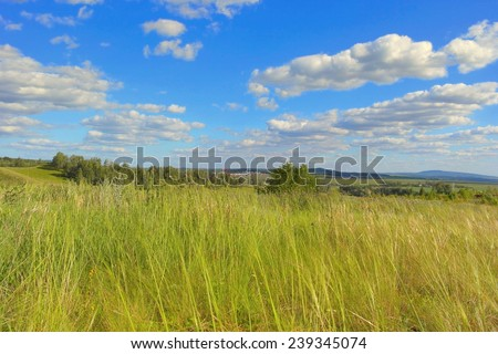 Beautiful summer landscape with green grass under blue sky - stock photo