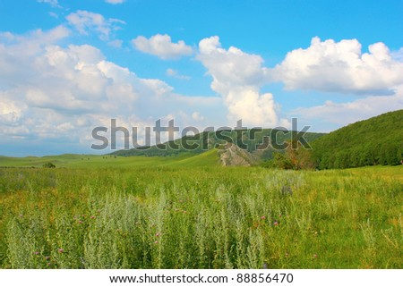 Beautiful summer landscape with mountains