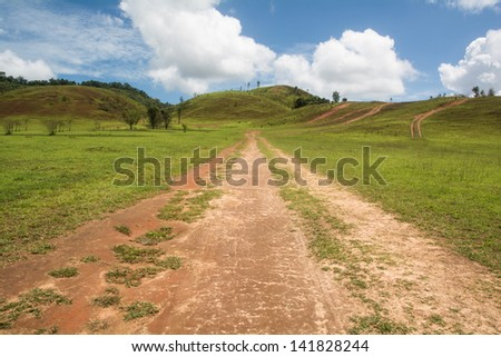 Beautiful summer landscape with road in the mountain grass, nature road composition