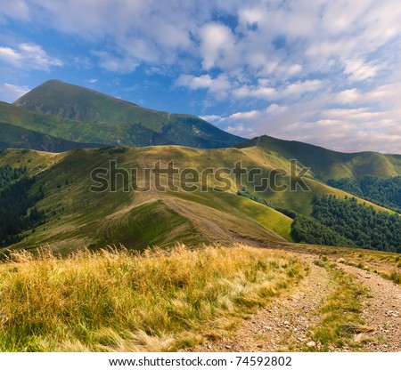 Beautiful summer landscape with road in the mountains - stock photo