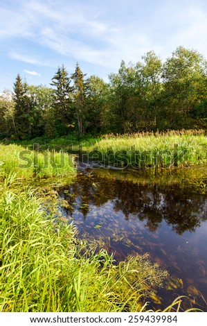 Beautiful summer landscape with small tranquil river in sunny day - stock photo
