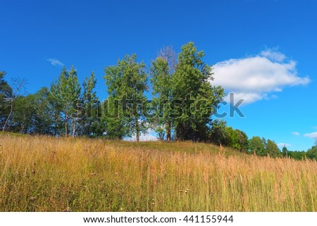 Beautiful summer landscape with trees, grass, sky and clouds - stock photo