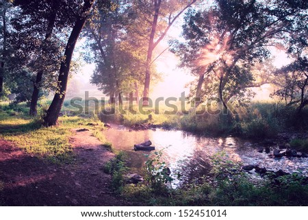 Beautiful summer morning in wood with sun rays and a fog from the river, vintage style - stock photo