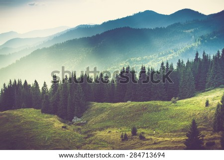 Beautiful summer mountain landscape at sunshine.Filtered image:cross processed vintage effect. - stock photo