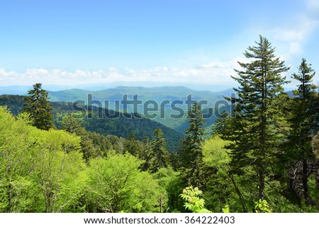 Beautiful summer mountain landscape, North Carolina.