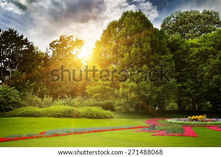 beautiful summer park and sunset - stock photo
