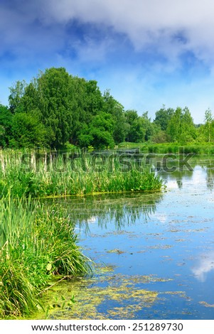 Beautiful summer river landscape in cloudy day - stock photo