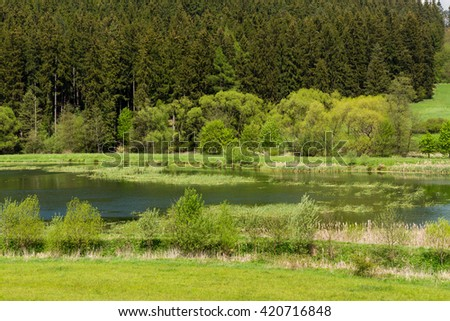Beautiful summer rural landscape with small lagoon. Rural landscape with pond. Spring landscape. Green czech countryside. Beautiful highland vysocina european countryside - stock photo