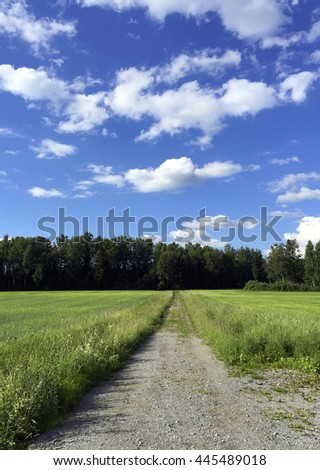 Beautiful summer scene in Finland. An empty road going far away to the forest between green fields. - stock photo