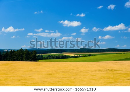 Beautiful summer secluded countryside of the Highlands, Czech republic. Europe. - stock photo