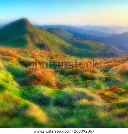 Beautiful summer sunrise in the mountains. Soft blurred background.