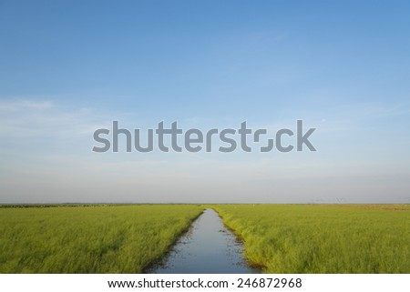Beautiful Summer sunset landscape over wetlands and harbor - stock photo