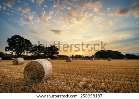 Beautiful Summer sunset over field of hay bales in countryside landscape