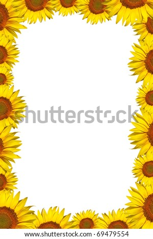 beautiful sunflower frame with space for text - Sunflower Picture Frames