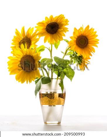 Beautiful Sunflowers Vase Stock Photo Edit Now 209500993