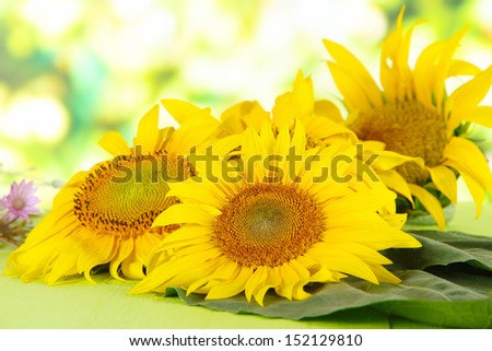 Beautiful sunflowers on wooden table, on bright background