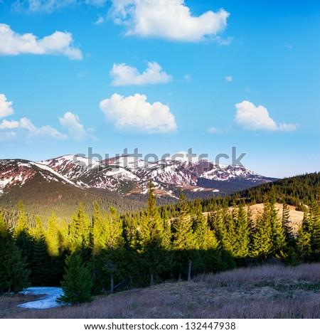 Beautiful sunny day is in mountain landscape. Carpathian, Ukraine, Europe. Beauty world. - stock photo