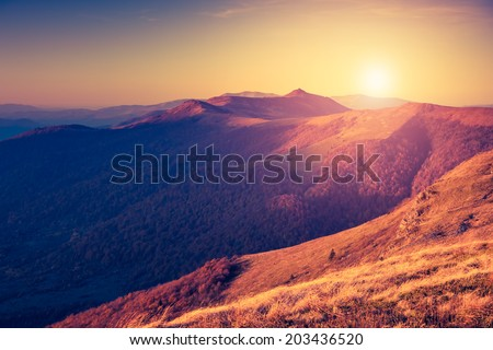 Beautiful sunny day is in mountain landscape. Carpathian, Ukraine, Europe. Beauty world. Retro filtered. Instagram toning effect. - stock photo
