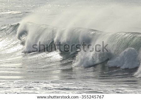 Beautiful sunny spraying wave. Northern portuguese coast.