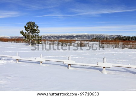 Beautiful sunny winter day in the park - stock photo