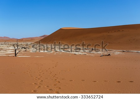 beautiful sunrise landscape of hidden Dead Vlei in Namib, blue sky, best place of Namibia