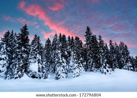 Beautiful Sunrise near Madonna di Campiglio Ski Resort, Italian Alps, Italy - stock photo