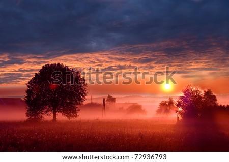 Beautiful sunrise on the field. - stock photo