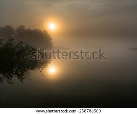 beautiful sunrise over foggy lake - stock photo