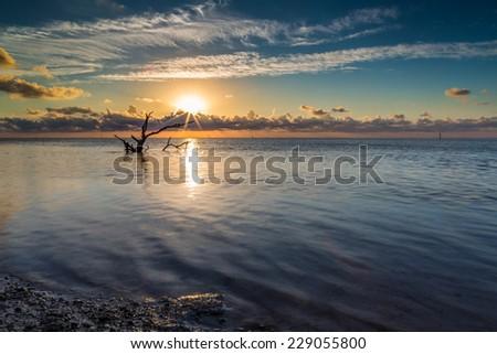 Beautiful sunrise over the Florida keys - stock photo