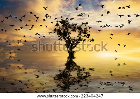 Beautiful sunrise with single tree and water with golden clouds and a flock of birds