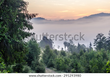 Beautiful sunrise with the morning mist. Ukraine