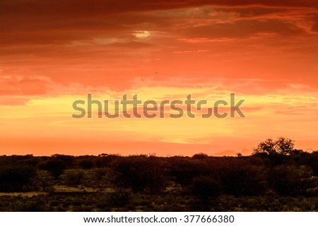 Beautiful sunset  at the Erindi Private Game Reserve, Namibia - stock photo