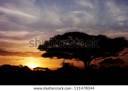 Beautiful sunset in Amboseli National Park 10 - stock photo