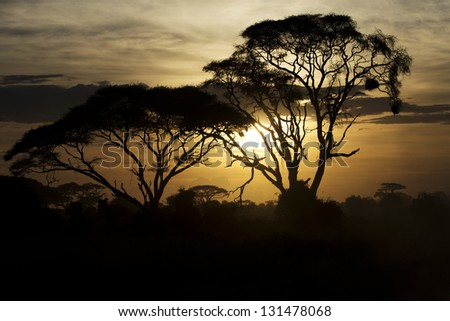 Beautiful sunset in Amboseli National Park 06 - stock photo