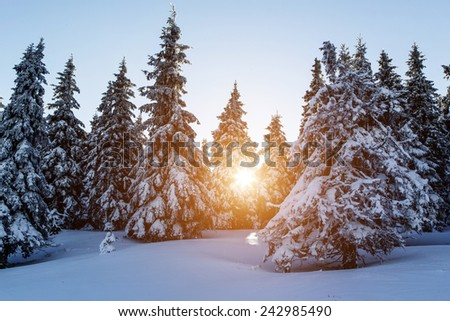 Beautiful sunset in high mountains Alps Austria