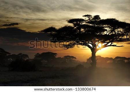 Beautiful sunset in Kenya 08 - stock photo