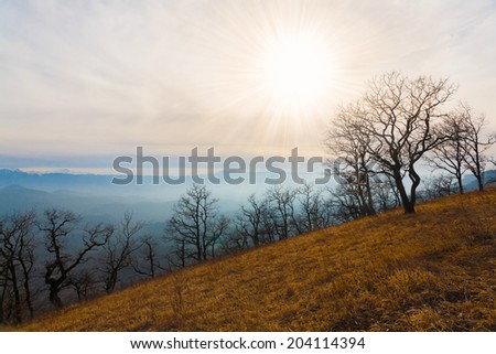 beautiful sunset in the autumn  landscape of the mountain
