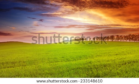 Beautiful sunset on spring field - stock photo