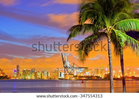 Beautiful sunset over  Downtown and the Port of Miami, beautiful colorful sunset skyline panorama with silhouettes of Palm trees