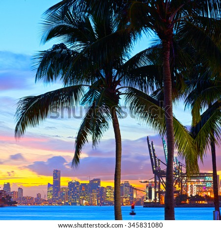 Beautiful sunset over  Downtown and the Port of Miami Florida, beautiful colorful sunset with silhouettes of palm trees - stock photo