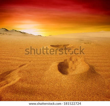 Beautiful sunset over the sand dunes in the Sahara desert