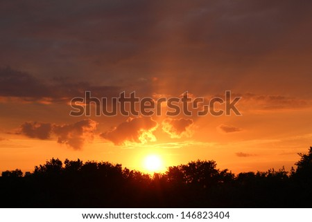 beautiful sunset sky with abstract clouds over the forest