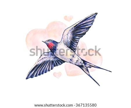 Beautiful swallow. Watercolor illustration. Spring bird brings love. Handwork - stock photo