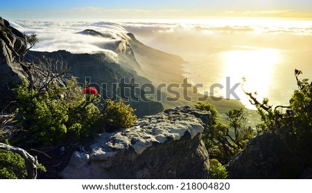 Beautiful Table Mountain covered in clouds at sunset - stock photo