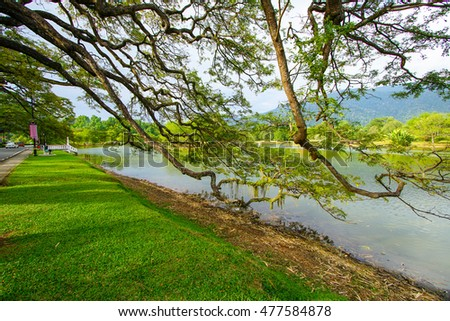 Beautiful Taiping Lake Gardens, Malaysia