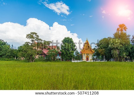 Beautiful thai temple and rice field in thailand.